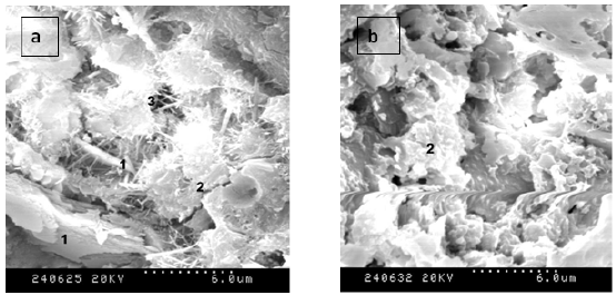 Microstructure of cement paste without(a) and with(b) nano silica(Li et   Download Scientific