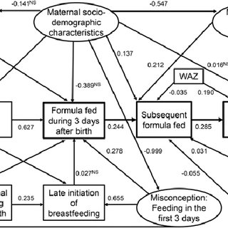 (PDF) Infant Formula Feeding at Birth Is Common and