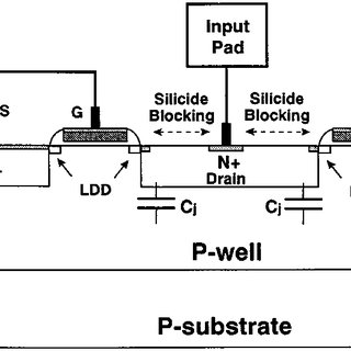 A schematic diagram of the single-stage ESD protection