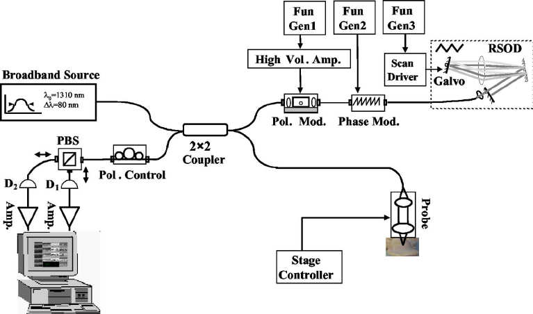 Schematic diagram of PS-OCT system setup: function