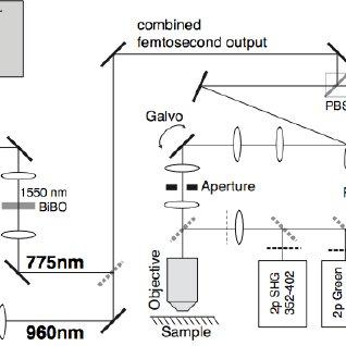 (PDF) Femtosecond laser bone ablation with a high