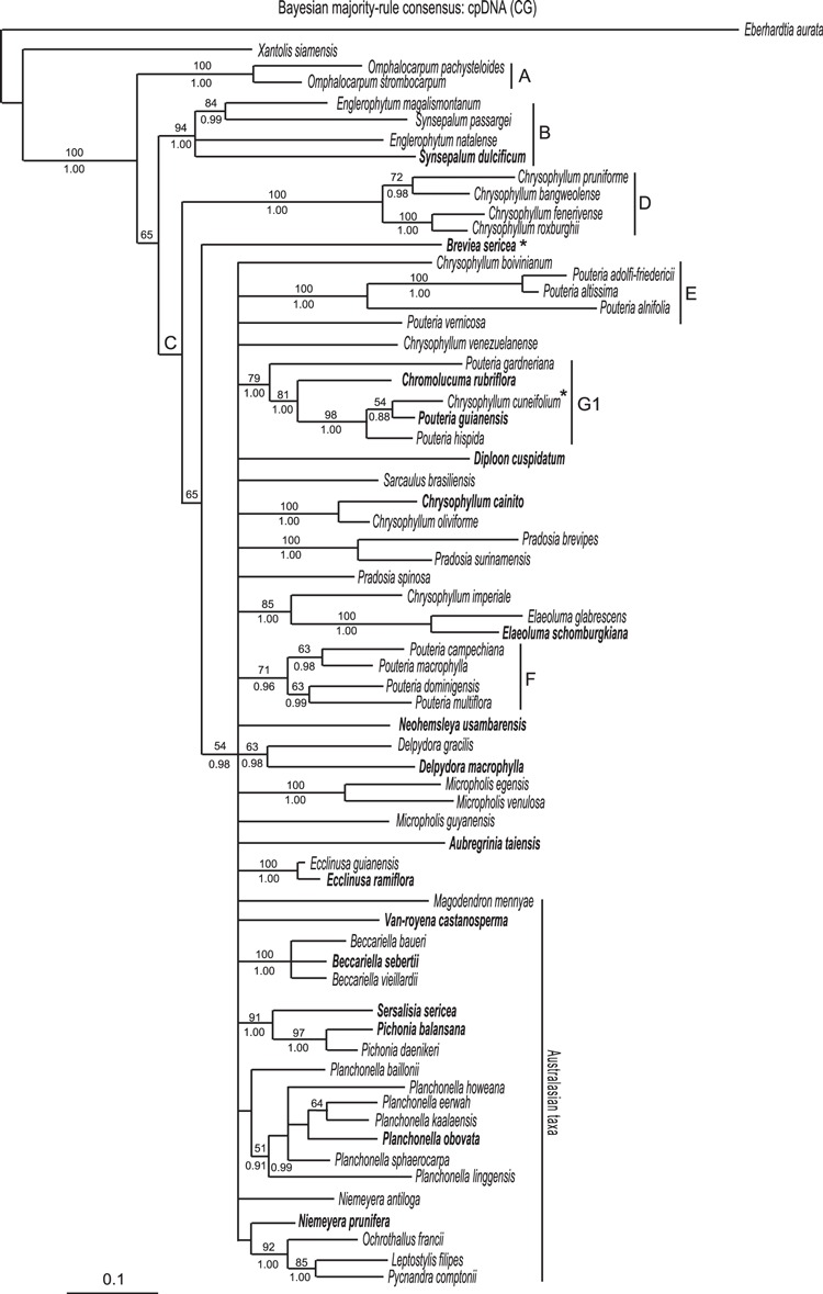 hight resolution of bayesian majority rule consensus tree shown as a phylogram of download scientific diagram