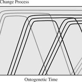 (PDF) Life Span Theory in Developmental Psychology