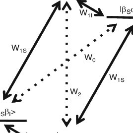 Energy level diagram for a two-spin system; S represents
