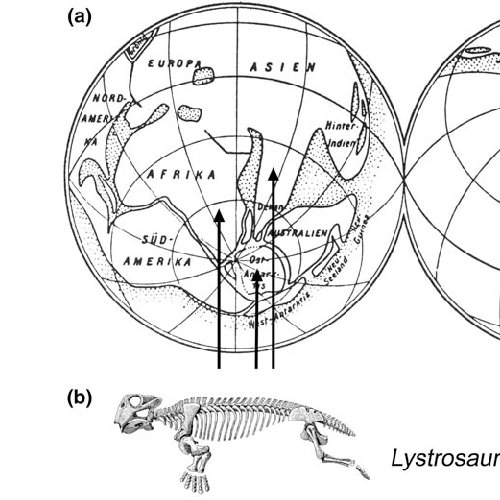 The theory of continental drift as proposed by Alfred