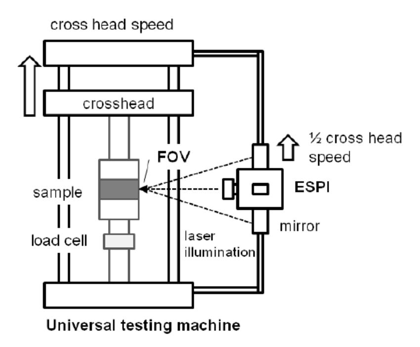 Test setup for internal bond specimen analysis in a