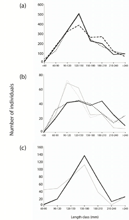 small resolution of number of individuals in 30 mm length classes of a perch from the littoral