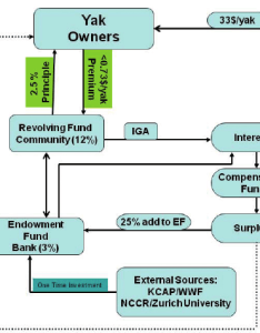 Flow chart of the implementation structure insurance scheme also rh researchgate