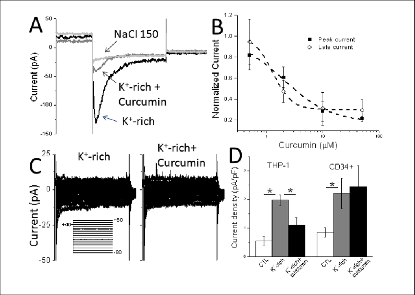 Effect of curcumin on whole cell membrane currents in THP