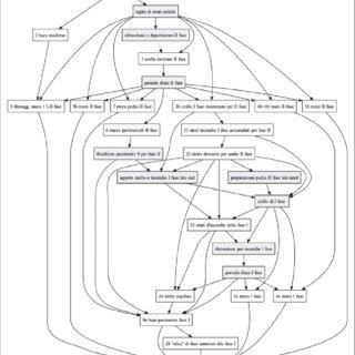 (PDF) TECCHIATI U., MORANDI A., NEGRI P., RIZZI G., RIZZI