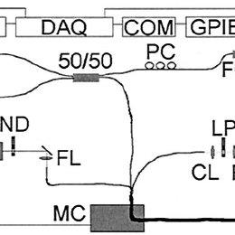 (PDF) Miniature Endoscope for Simultaneous Optical