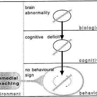 A causal model of dyslexia as a result of a cerebellar