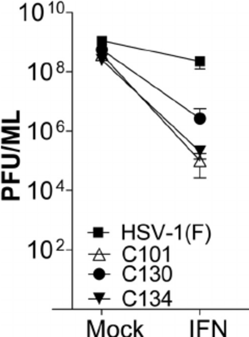 medium resolution of ifn 1 treatment suppresses hsv 1 replication and has the greatest download scientific diagram