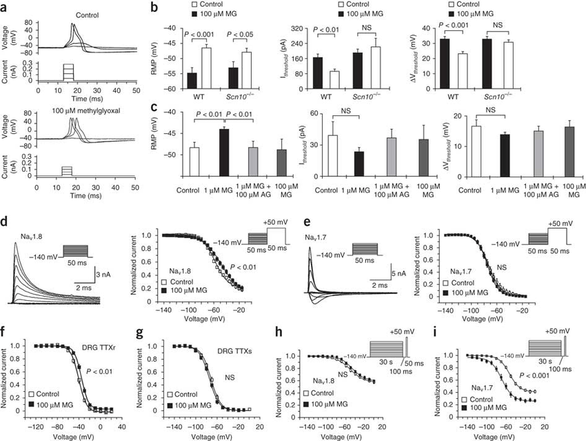 Methylglyoxal modification of Na(v)1.8 facilitates