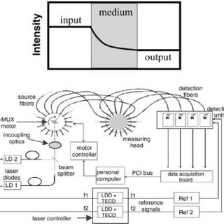 (a-top): Principle of steady-state domain (SSD