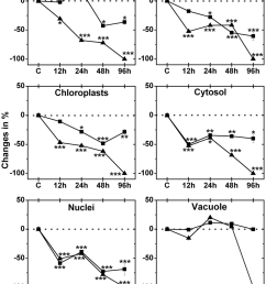 compartment specific changes in ascorbate labeling labeling was evaluated within leaf mesophyll cells of [ 850 x 1118 Pixel ]