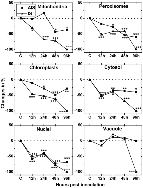 small resolution of compartment specific changes in ascorbate labeling labeling was evaluated within leaf mesophyll cells of