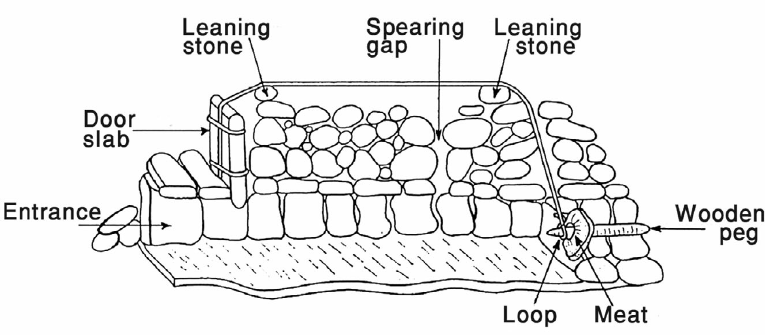 A schematic cross-section of a functioning 'leopard trap