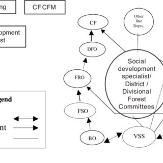 (PDF) PARTICIPATORY FOREST MANAGEMENT IN ANDHRA PRADESH: A
