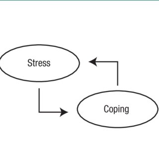 (PDF) Predictors of stress and coping strategies adopted