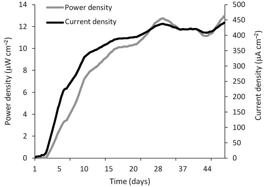 Current and power densities during MFC (Microbial Fuel