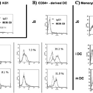 Analysis of HLA-G cell-surface expression using flow
