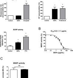 effects of depe on p glycoprotein bcrp mrp2 and bsep transport activity  [ 850 x 1016 Pixel ]