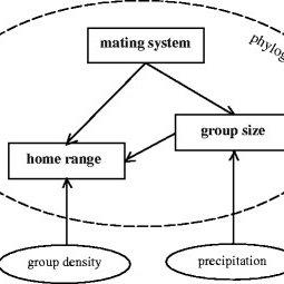 (PDF) Identifying environmental versus phylogenetic