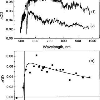 a A series of DAS for a Cu x S sample after 540 nm laser