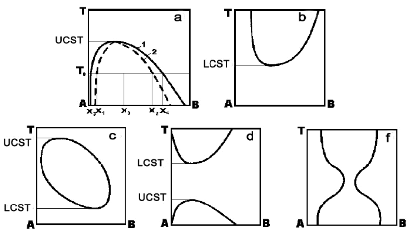 Basic types of the phase diagrams of polymer system with