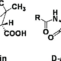 Mechanism of fosfomycin action and inactivation. ( a