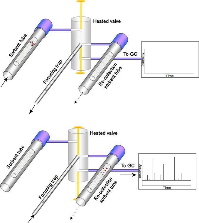 Quantitative recollection of thermal desorption tube split