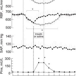 Renal blood flow (RBF), systemic arterial pressure (SAP