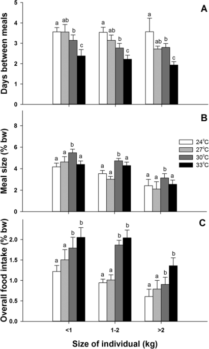 The effect of body size on (A) the feeding frequency, (B