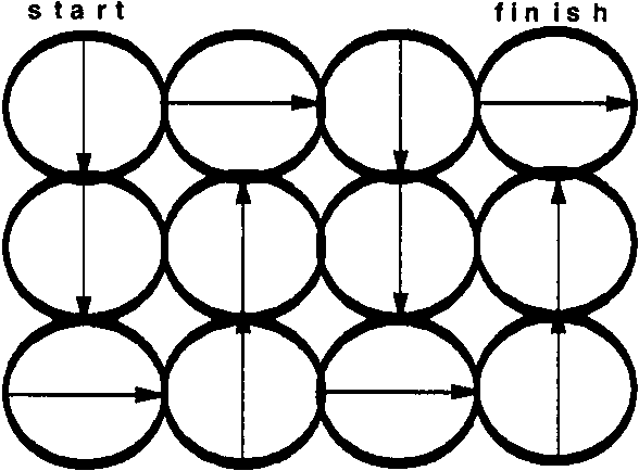 Suggested pattern for examination of 12 oil-imersion ®elds