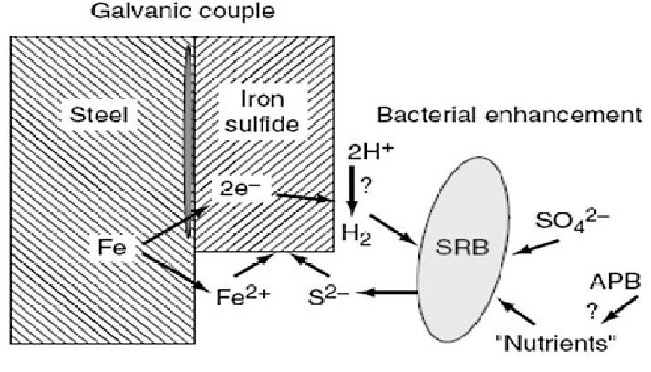 corrosion cell diagram