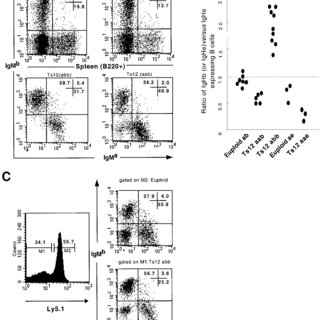Flow cytometry analysis of IgM (IgD)-expressing B cells in