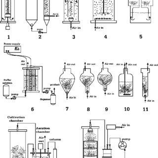 (PDF) Betalain production in plant in vitro systems