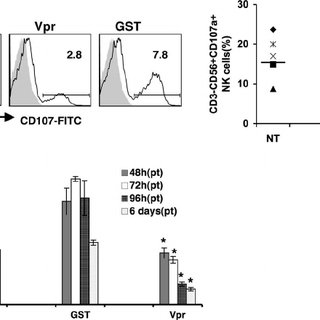 (PDF) Infection with Vpr-Positive Human Immunodeficiency