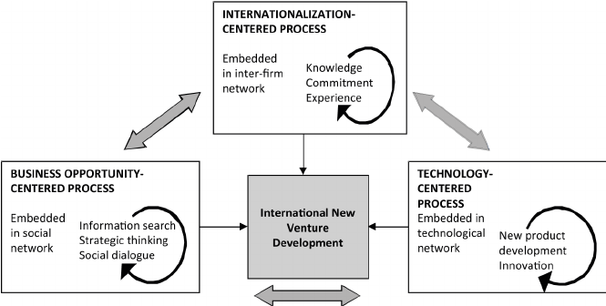 Three process levels of international new venture