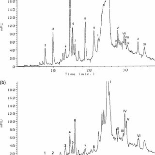 HPLC chromatogram of the mixture of standards at 290 nm