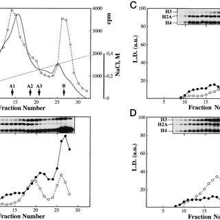 Analysis of histone acetyltransferase activities in wild