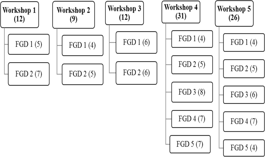 Flow chart representation of the two-stage consultation