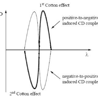 Schematic representation of the induced positive-to