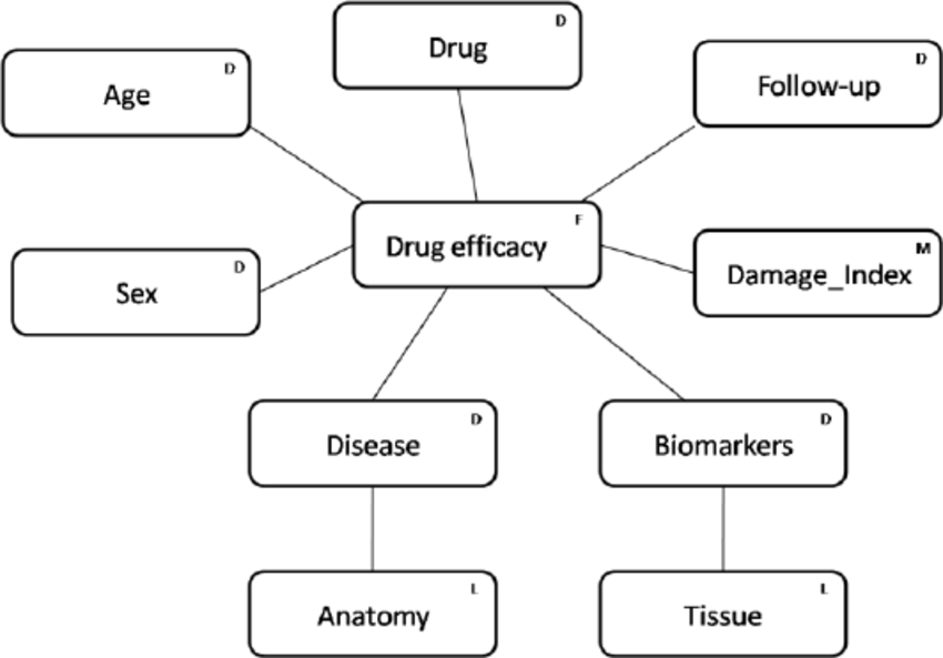 Dimensions defined for analyzing rheumatology patients. We