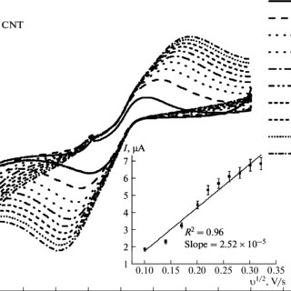 (PDF) Development of methods for functionalization of