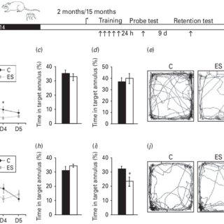 Early stress (ES) evokes altered epigenetic histone