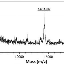 Optical density (OD) and biomass change in time during