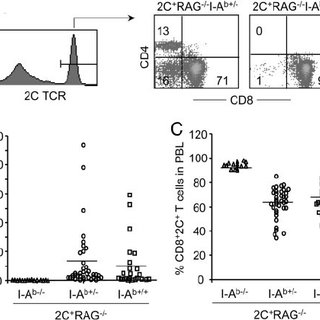 (PDF) Development of CD4+ T cells expressing a nominally