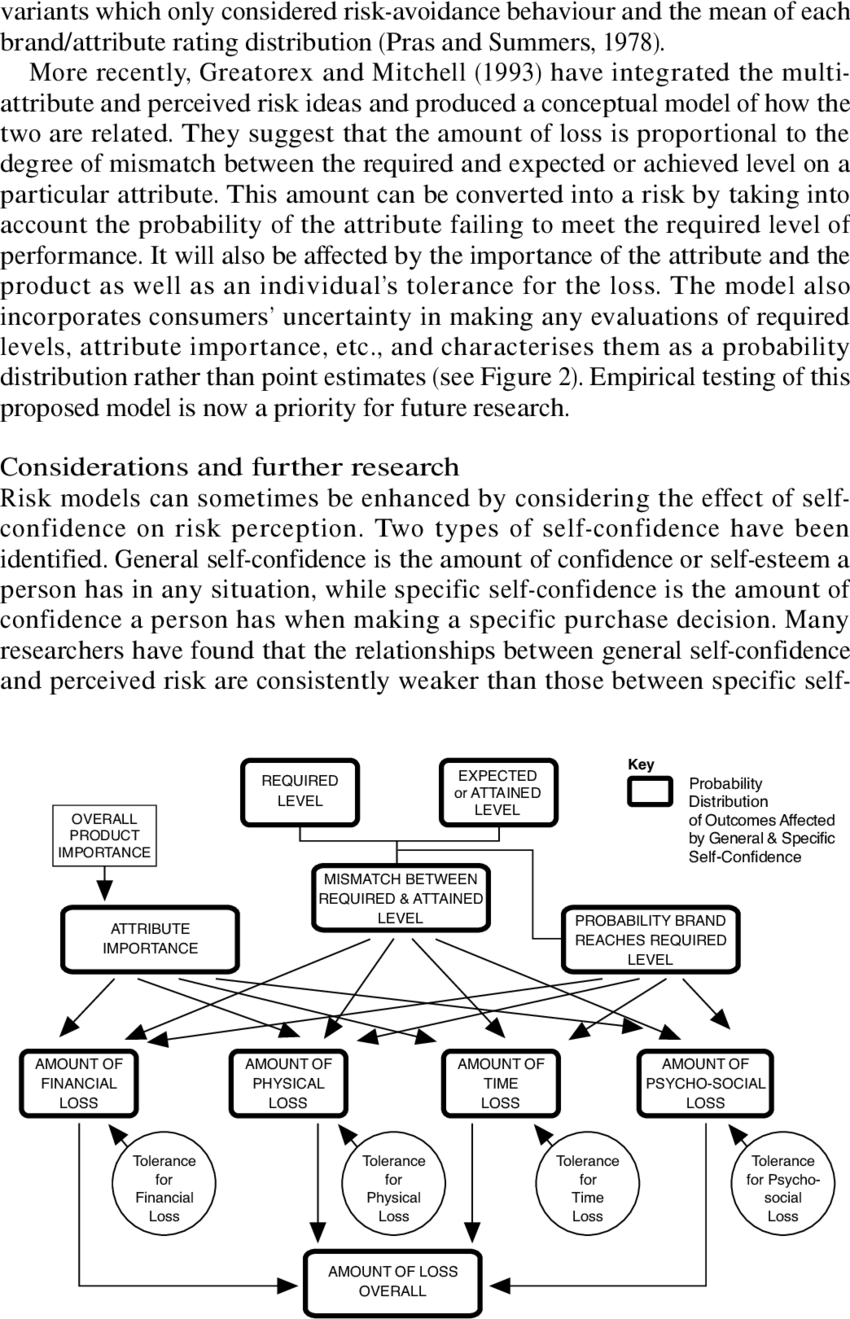 hight resolution of flow diagram of risk processes in a brand choice decision for a single attribute